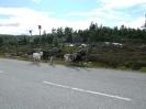 Norway 2007125