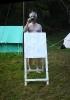 Summer - Camp - 2008 - 42